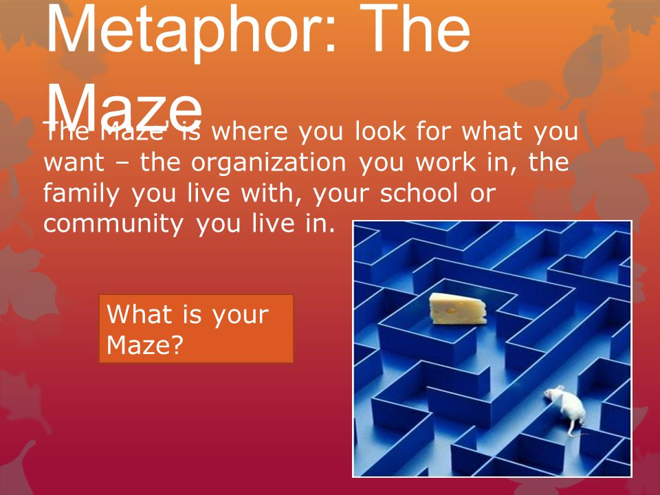 Metaphor: The Maze The Maze is where you look for what you want – the organization you work in, the family you live with, your school or community you live in.