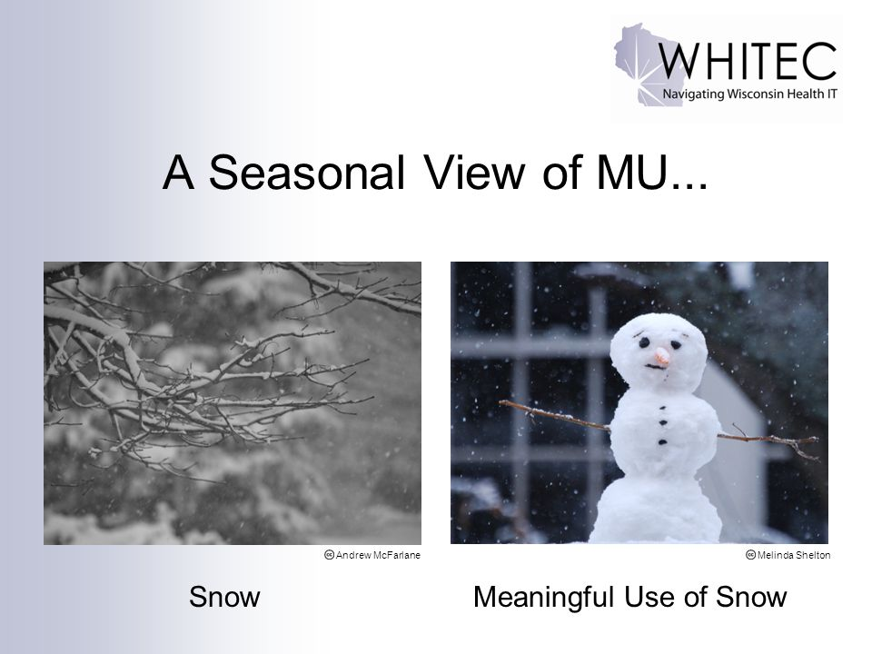 A Seasonal View of MU... Snow Meaningful Use of Snow Andrew McFarlaneMelinda Shelton