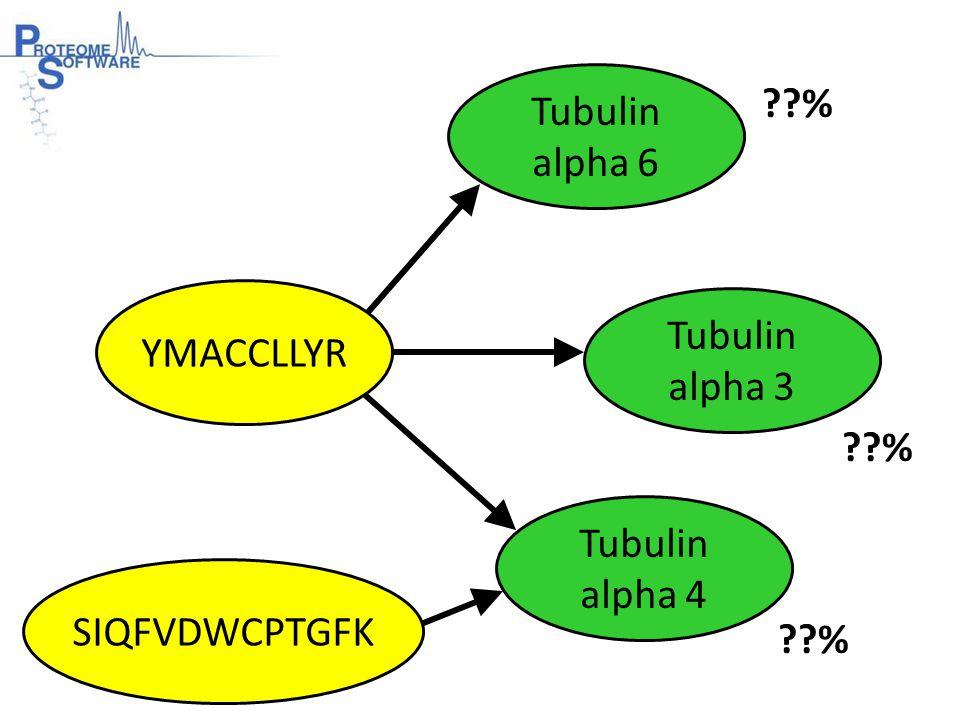Tubulin alpha 6 Tubulin alpha 3 YMACCLLYR SIQFVDWCPTGFK Tubulin alpha 4 %