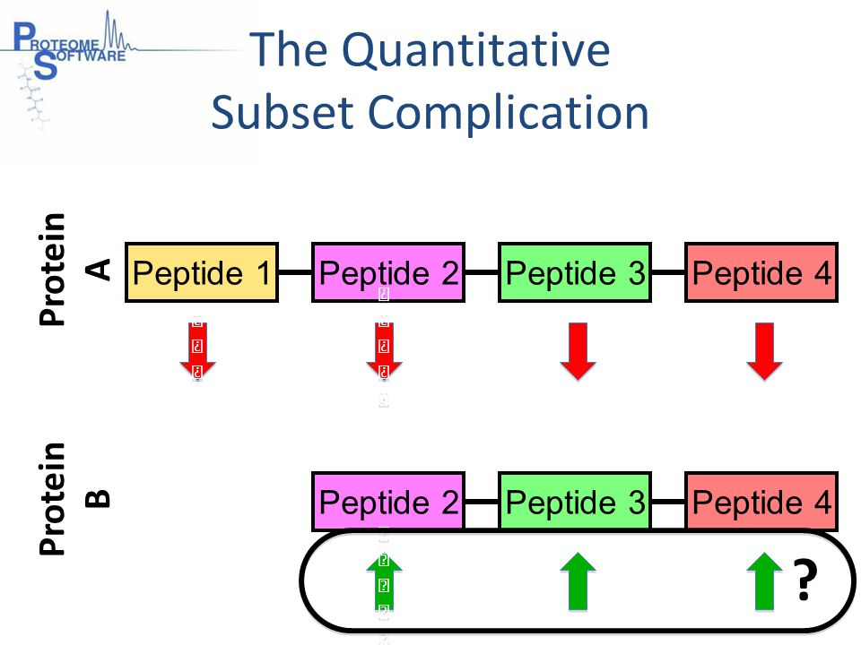 Peptide 1Peptide 2Peptide 3Peptide 4 Peptide 2Peptide 3Peptide 4 Protein B Protein A The Quantitative Subset Complication