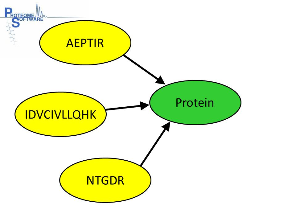 The Bold Red Complication Peptide 1 Protein B Protein A 100% Peptide 2Peptide 3Peptide 4 Peptide 3Peptide 4Peptide 5 100% 0% 100% ?