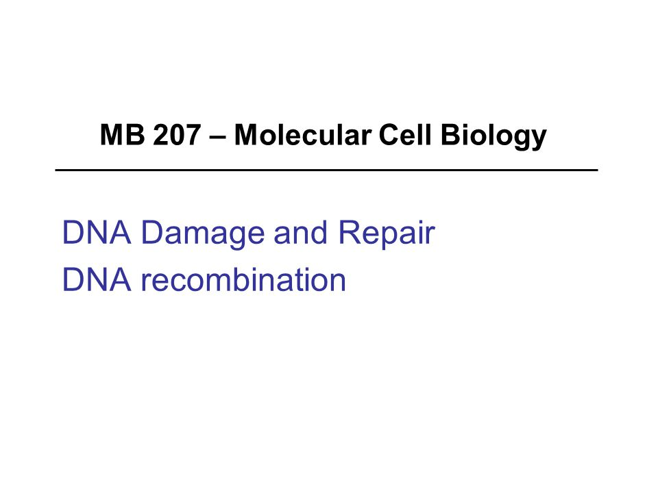 MB 207 – Molecular Cell Biology DNA Damage and Repair DNA recombination