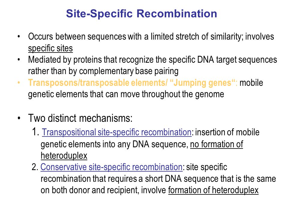 Site-Specific Recombination Occurs between sequences with a limited stretch of similarity; involves specific sites Mediated by proteins that recognize