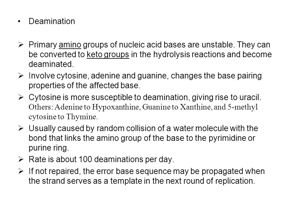 Deamination  Primary amino groups of nucleic acid bases are unstable. They can be converted to keto groups in the hydrolysis reactions and become dea