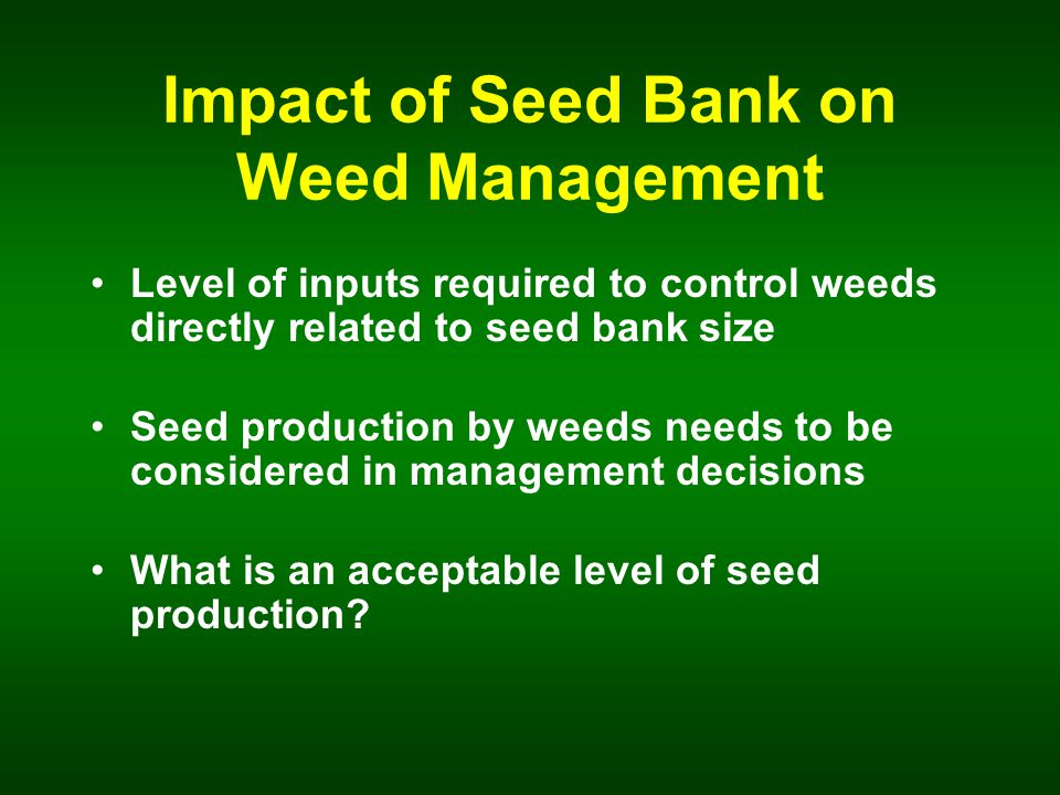 Impact of Seed Bank on Weed Management Level of inputs required to control weeds directly related to seed bank size Seed production by weeds needs to be considered in management decisions What is an acceptable level of seed production