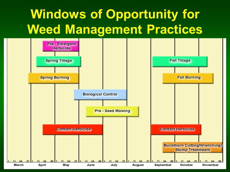 Windows of Opportunity for Weed Management Practices