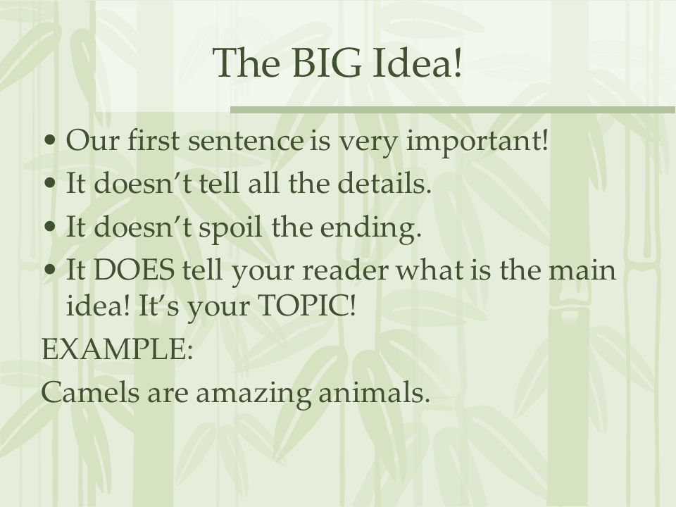 The BIG Idea. Our first sentence is very important.