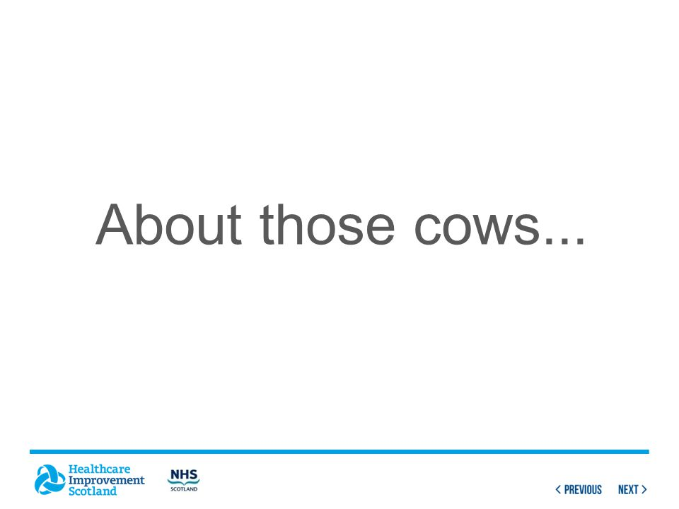 About those cows...