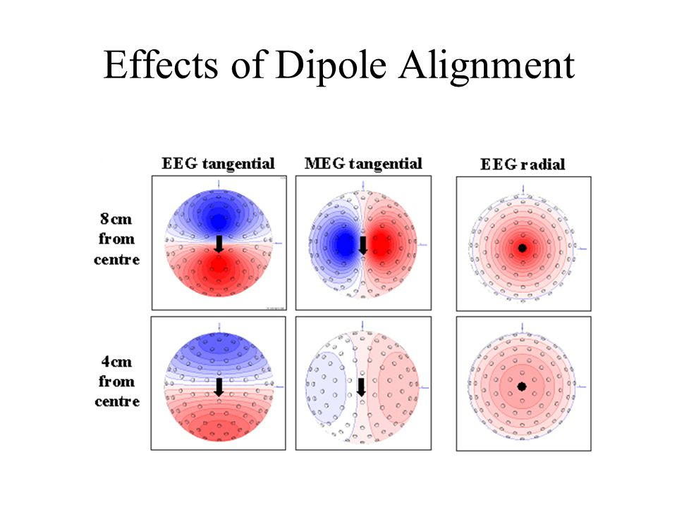 Effects of Dipole Alignment