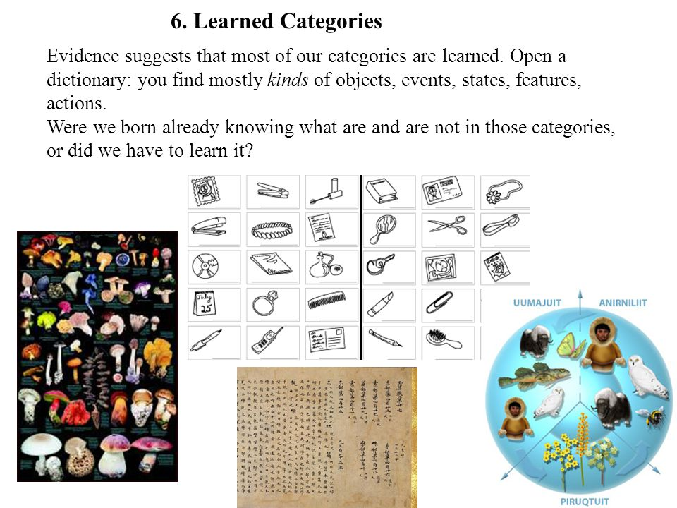 Evidence suggests that most of our categories are learned. Open a dictionary: you find mostly kinds of objects, events, states, features, actions. Wer