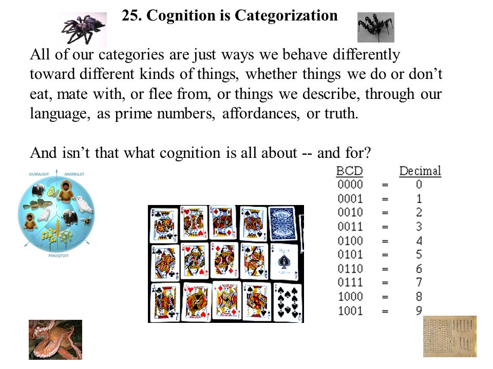 All of our categories are just ways we behave differently toward different kinds of things, whether things we do or don't eat, mate with, or flee from, or things we describe, through our language, as prime numbers, affordances, or truth.