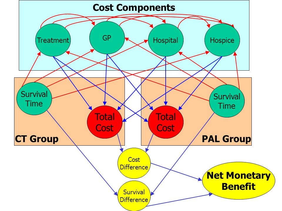 PAL GroupCT Group Cost Components GP HospitalHospiceTreatment Total Cost Total Cost Survival Time Survival Time Net Monetary Benefit Survival Difference Cost Difference