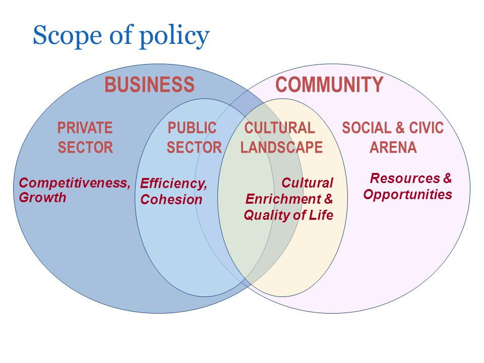 Scope of policy COMMUNITY PUBLIC SECTOR CULTURAL LANDSCAPE BUSINESS Competitiveness, Growth Efficiency, Cohesion Cultural Enrichment & Quality of Life Resources & Opportunities PRIVATE SECTOR SOCIAL & CIVIC ARENA