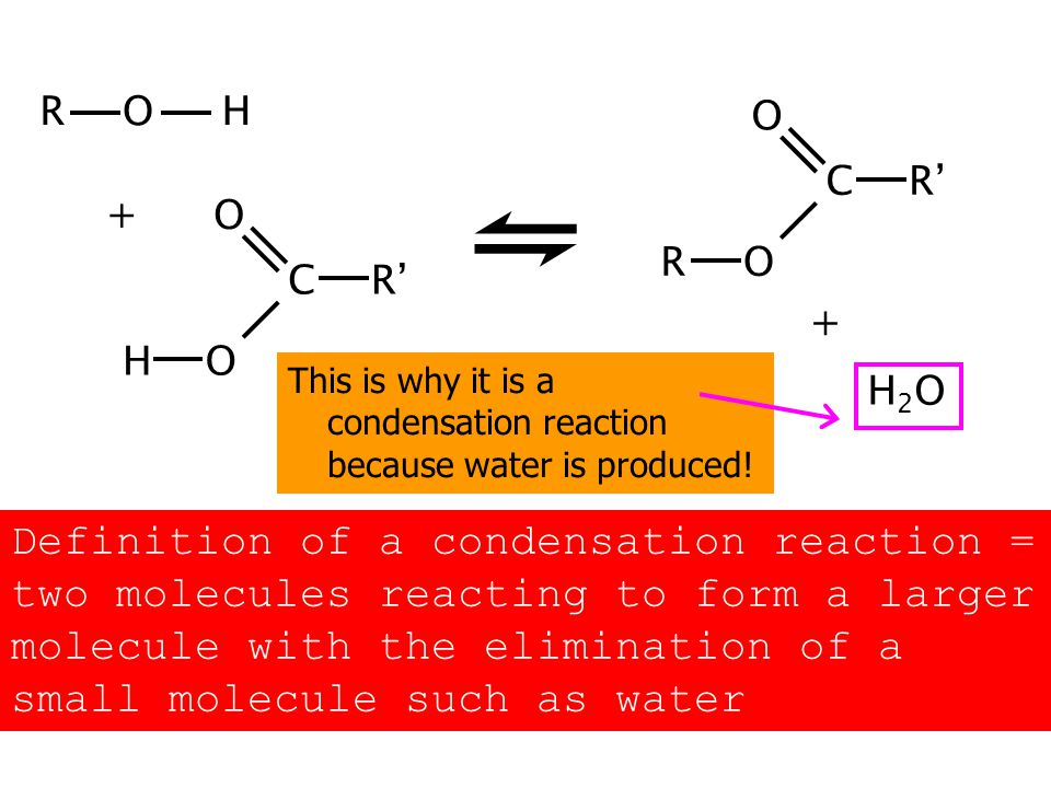 This is why it is a condensation reaction because water is produced.