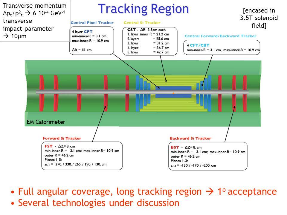 Tracking Region Full angular coverage, long tracking region  1 o acceptance Several technologies under discussion EM Calorimeter [encased in 3.5T solenoid field] Transverse momentum Δp t /p 2 t  6 10 -4 GeV -1 transverse impact parameter  10μm