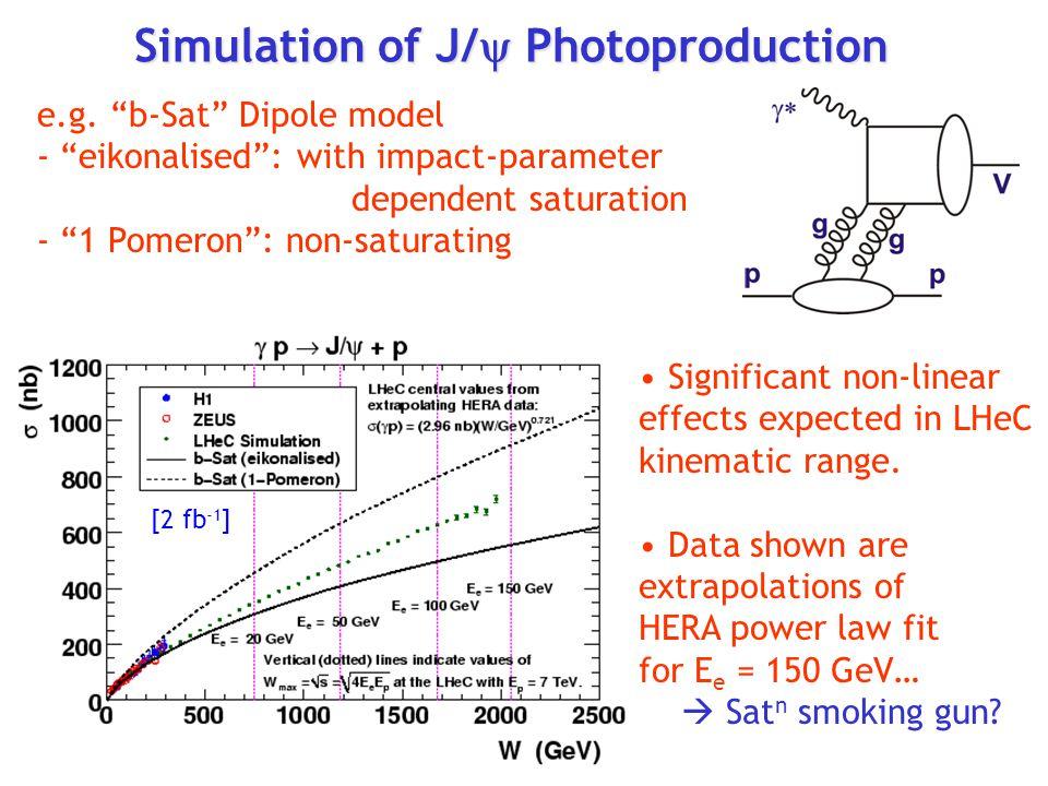 Simulation of J/  Photoproduction e.g.