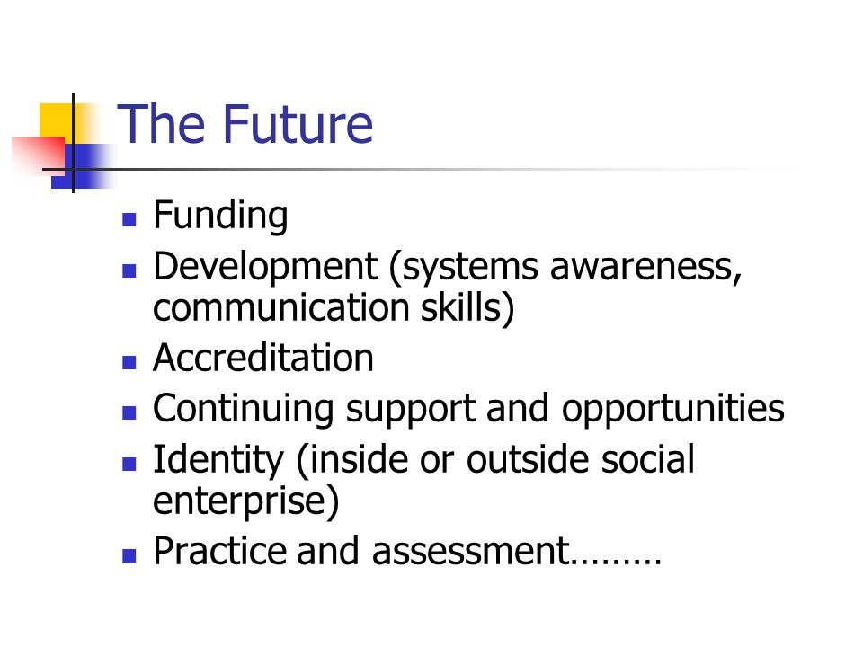 The Future Funding Development (systems awareness, communication skills) Accreditation Continuing support and opportunities Identity (inside or outside social enterprise) Practice and assessment………