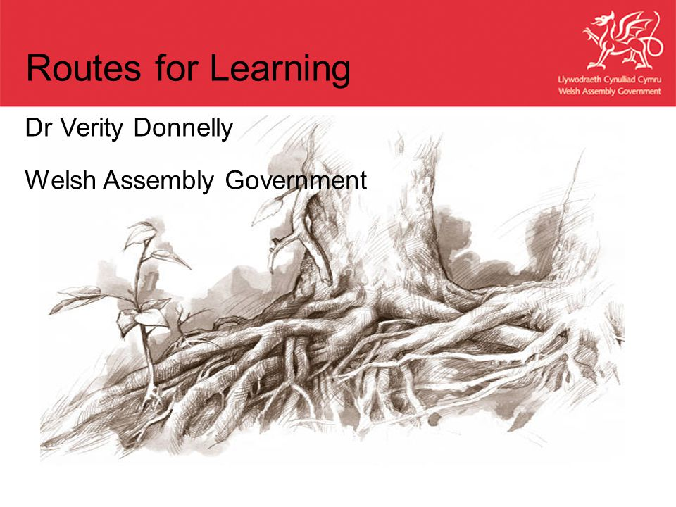 Dr Verity Donnelly Welsh Assembly Government Routes for Learning