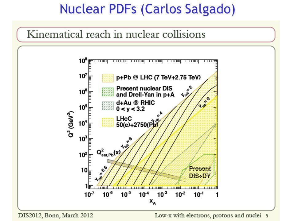 Nuclear PDFs (Carlos Salgado)