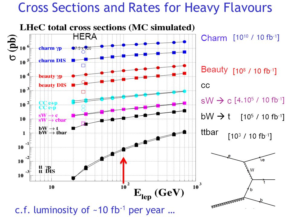 Cross Sections and Rates for Heavy Flavours HERA 27.5 x 920 Charm Beauty cc sW  c bW  t ttbar c.f.