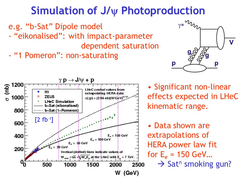 Simulation of J/  Photoproduction e.g.