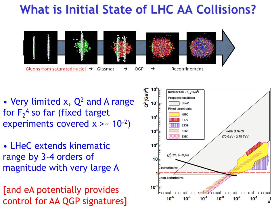 What is Initial State of LHC AA Collisions.