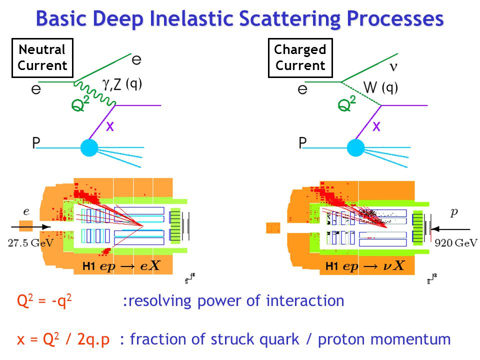 Basic Deep Inelastic Scattering Processes Q 2 = -q 2 :resolving power of interaction x = Q 2 / 2q.p : fraction of struck quark / proton momentum (q) Neutral Current Charged Current