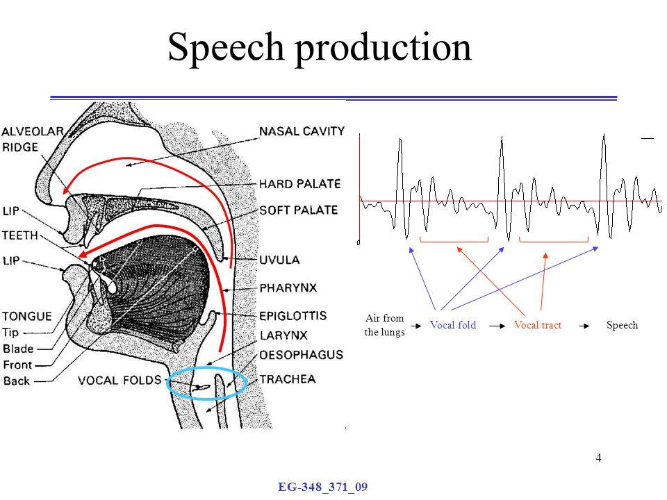 EG-348_371_09 4 Speech production Air from the lungs Vocal foldVocal tractSpeech