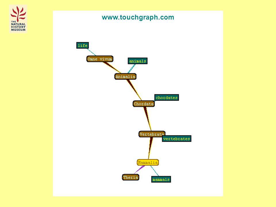 www.touchgraph.com
