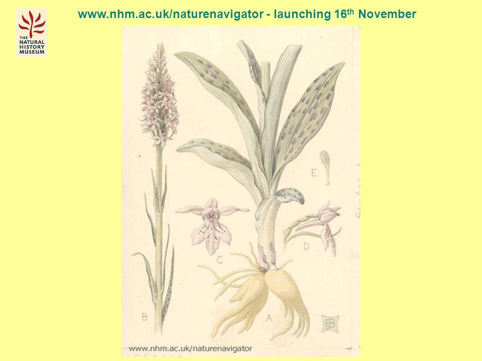 www.nhm.ac.uk/naturenavigator - launching 16 th November