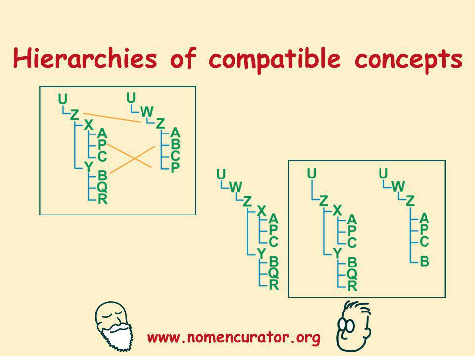 www.nomencurator.org Hierarchies of compatible concepts