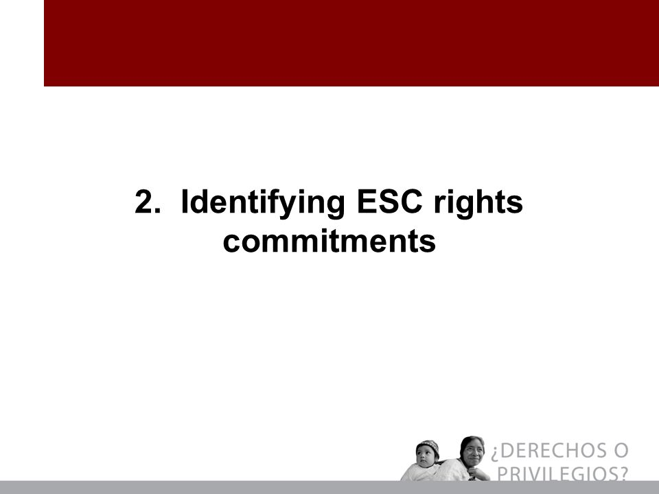 2. Identifying ESC rights commitments