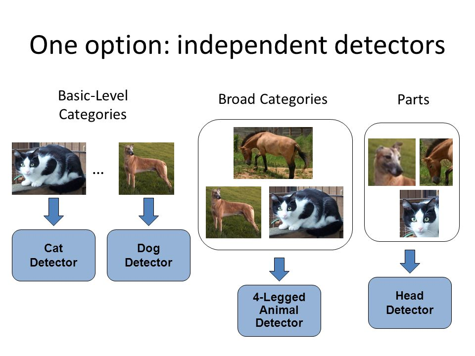 One option: independent detectors Cat Detector Dog Detector 4-Legged Animal Detector Basic-Level Categories Broad Categories Parts … Head Detector