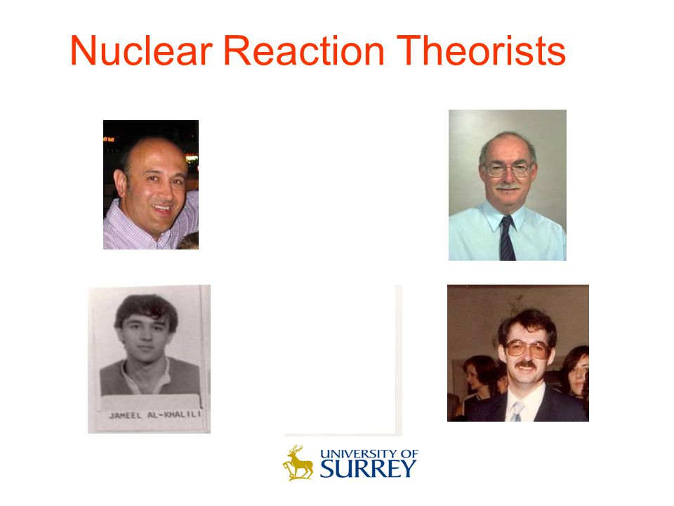 Nuclear Reaction Theorists