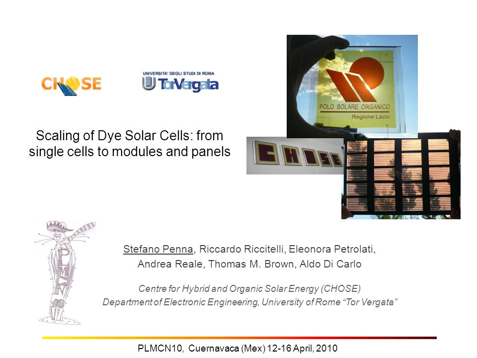 Scaling of Dye Solar Cells: from single cells to modules and panels Stefano Penna, Riccardo Riccitelli, Eleonora Petrolati, Andrea Reale, Thomas M.