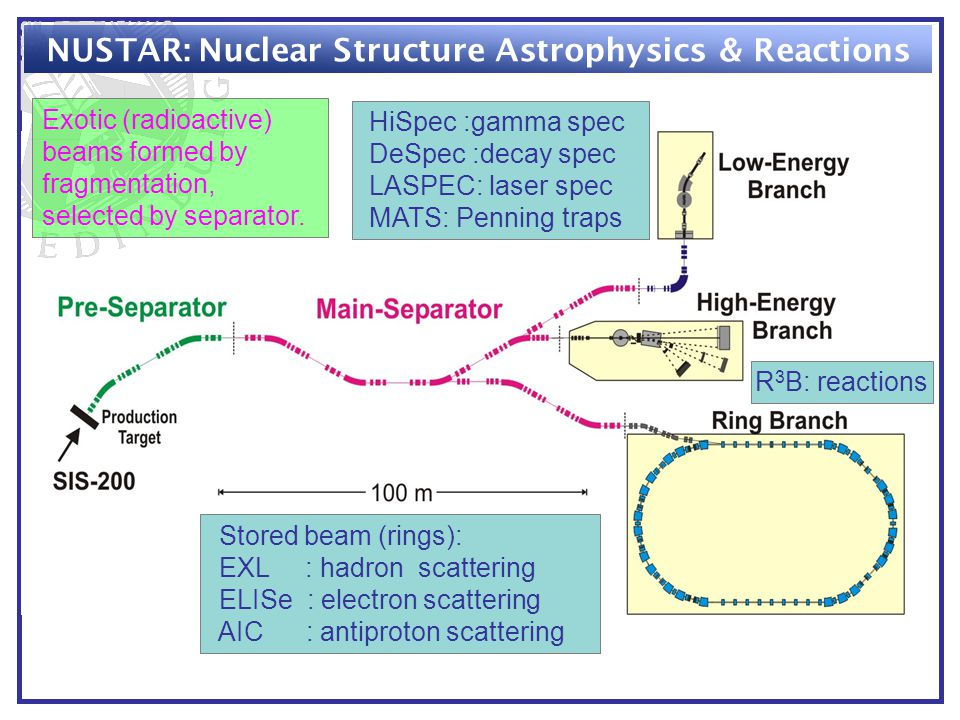 NUSTAR: Nuclear Structure Astrophysics & Reactions Exotic (radioactive) beams formed by fragmentation, selected by separator.