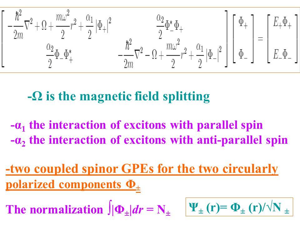 -Ω is the magnetic field splitting -two coupled spinor GPEs for the two circularly polarized components Φ ± -α 1 the interaction of excitons with parallel spin -α 2 the interaction of excitons with anti-parallel spin The normalization ∫ |Φ ± |dr = N ± Ψ ± (r)= Φ ± (r)/√N ±
