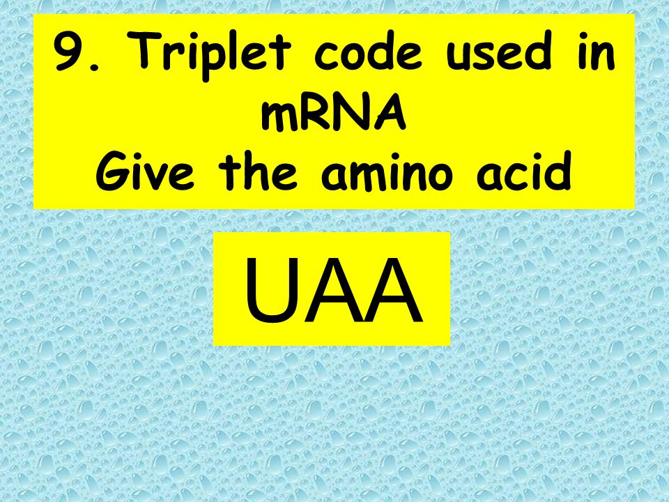 9. Triplet code used in mRNA Give the amino acid UAA