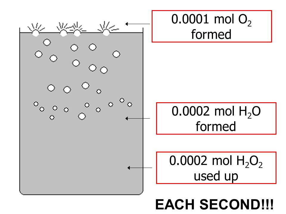 0.0001 mol O 2 formed 0.0002 mol H 2 O formed 0.0002 mol H 2 O 2 used up EACH SECOND!!!
