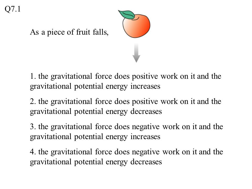 As a piece of fruit falls, 1. the gravitational force does positive work on it and the gravitational potential energy increases 2. the gravitational f
