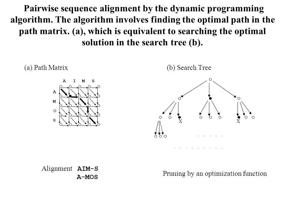 Pairwise sequence alignment by the dynamic programming algorithm.