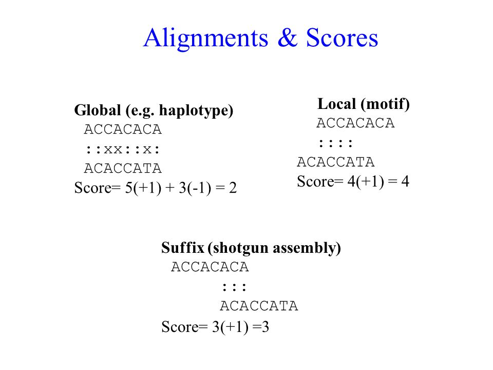 Alignments & Scores Global (e.g.