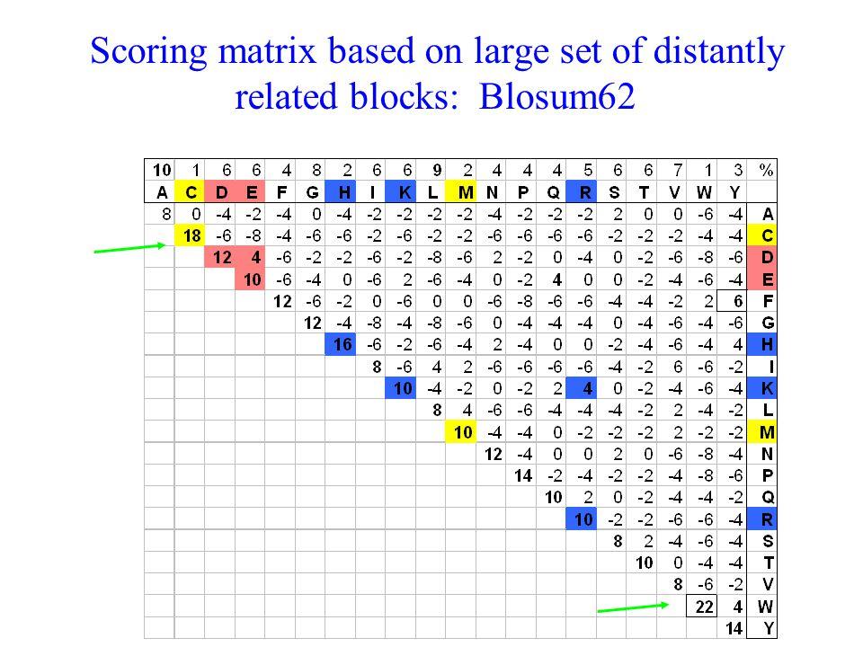 Scoring matrix based on large set of distantly related blocks: Blosum62