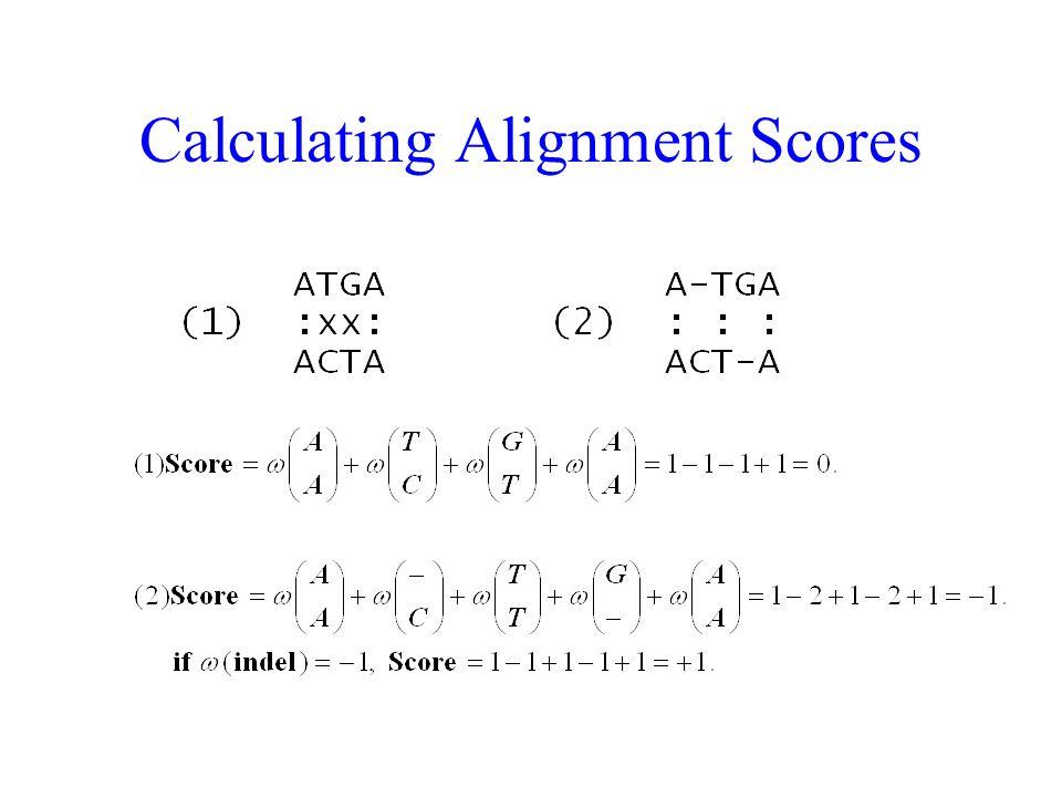 Calculating Alignment Scores