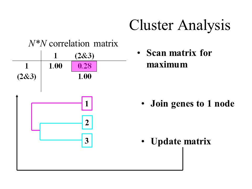 Cluster Analysis Scan matrix for maximum Join genes to 1 node 2 3 Update matrix 1