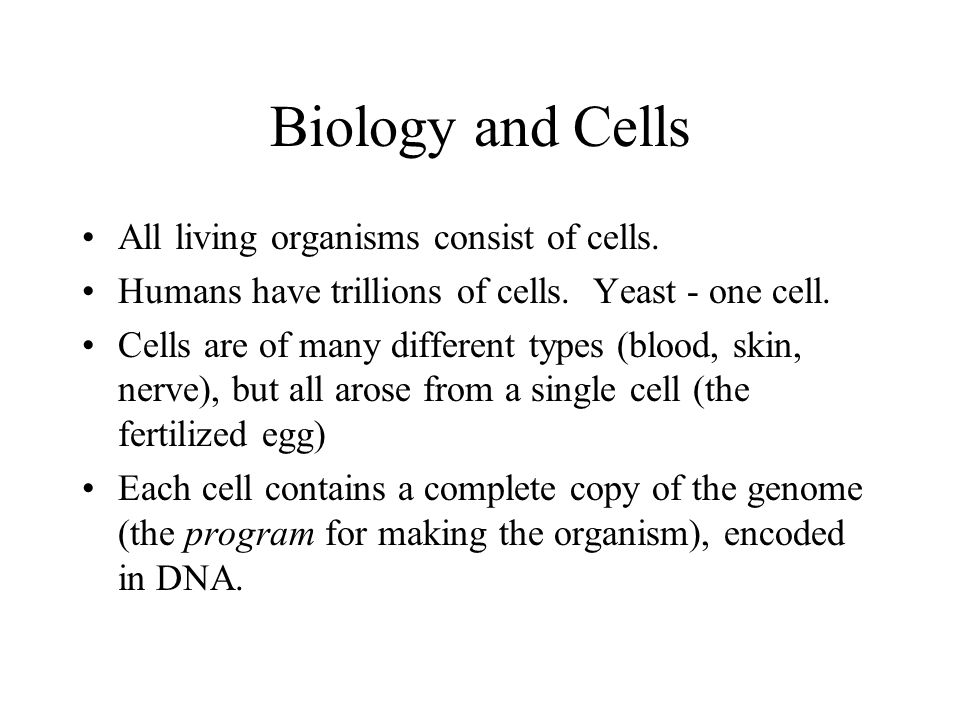 Biology and Cells All living organisms consist of cells.