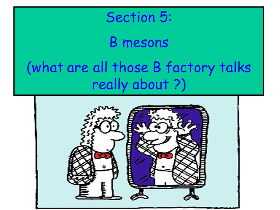: Section 5: B mesons (what are all those B factory talks really about ?)