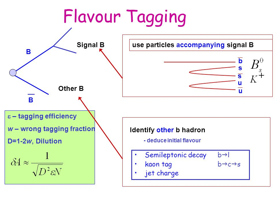 Flavour Tagging Semileptonic decayb  l kaon tag b  c  s jet charge B B Signal B Other Bb s s u u use particles accompanying signal B Identify other