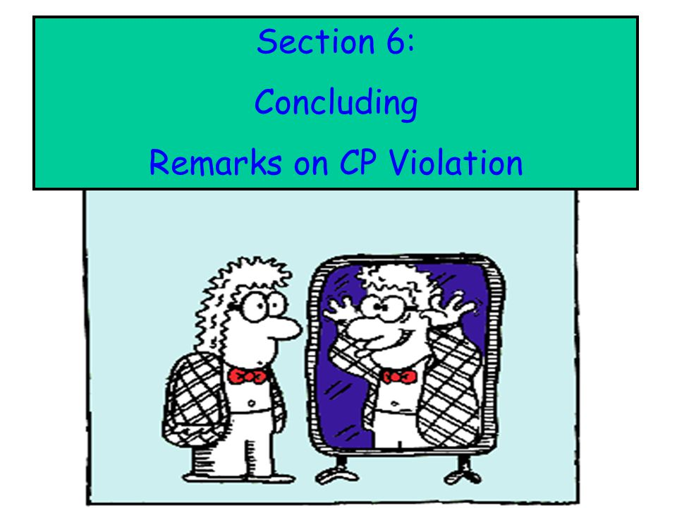 : Section 6: Concluding Remarks on CP Violation