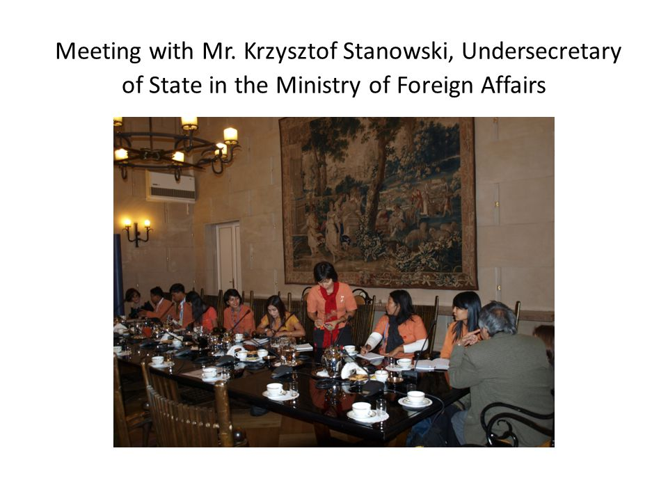Meeting with Mr. Krzysztof Stanowski, Undersecretary of State in the Ministry of Foreign Affairs